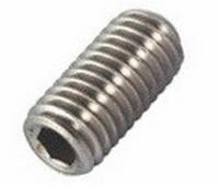 Roest Vrij Stalen Stelschroef met afschuining M2,5 x 5mm