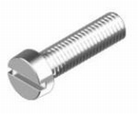 Roest Vrij Stalen cilinderkop schroef M2,5 x 5mm  Per 10 stuks