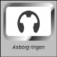 Asborgring DIN 6799