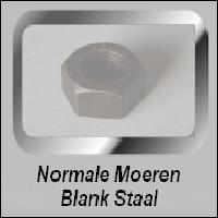 Normale Blank Stalen moeren
